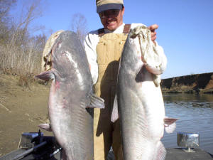 article-big-river-catfish-pic3