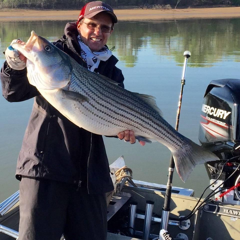Lake Texoma Striper Guide - with huge striper